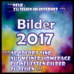 P1110252-1-150x150 in BILDER 2017